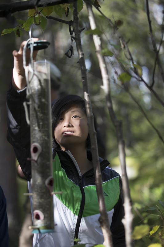 Ellen Uusitalo är en av många elever vid Lapplands gymnasium som deltar i den omtalade fågelmatningen i Talvatisskogen utanför Jokkmokk.